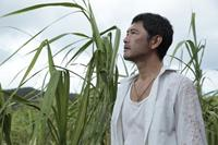 4STILL THE WATER Co 2014 FUTATSUME NO MADO Japanese Film Partners, Comme des C - Kopie